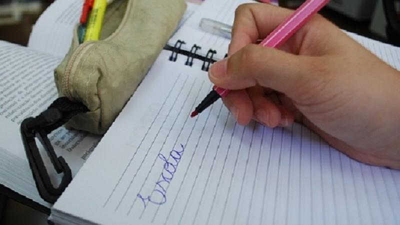 Segmento da educação lidera número de entidades cadastradas no programa NFG