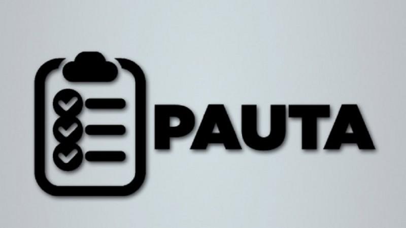 pauta10