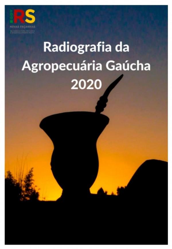 radiografia agro RS 2020