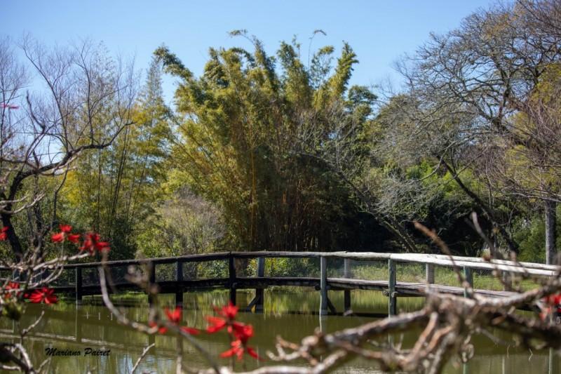 No Jardim Botânico, a entrada é limitada a 250 pessoas simultaneamente