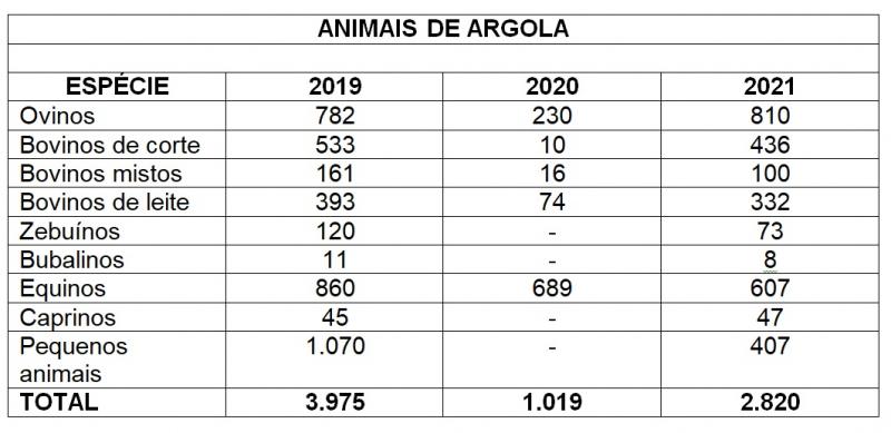 Animais argola Expointer2021